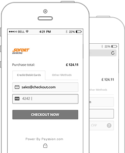 Global local payment solution provider-Mobile Payments